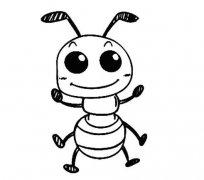蚂蚁怎么画 卡通蚂蚁的画法图片步骤素描