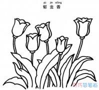 郁金香怎么画图片 植物郁金香的画法步骤