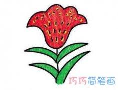 漂亮鸡冠花的画法 怎么简笔画鸡冠花图片