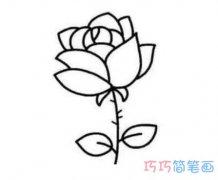 玫瑰花的画法分步骤 怎么画漂亮玫瑰花图片