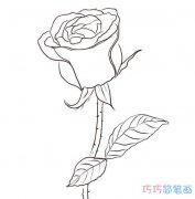 简单七夕玫瑰花怎么画_情人节玫瑰简笔画图片