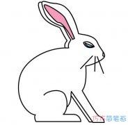 简单兔子的画法带颜色_兔子简笔画图片