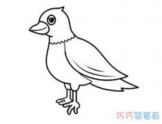 扁嘴小鸟的画法可爱_简单小鸟简笔画图片