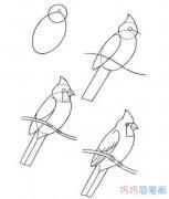 幼儿小鸟的画法步骤简单_啄木鸟简笔画图片