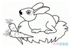 小白兔吃萝卜怎么画_幼儿简笔画兔子图片