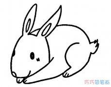 一学就会超简单卡通小白兔怎么画_兔子简笔画图片