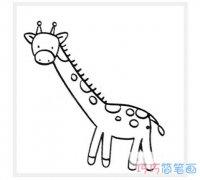 幼儿简单长颈鹿怎么画_长颈鹿的简笔画图片
