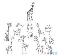 各种长颈鹿画法大全_长颈鹿的简笔画图片