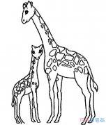 如何画长颈鹿和妈妈温馨_长颈鹿简笔画图片