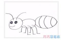 幼儿蚂蚁怎么画简单_蚂蚁简笔画图片