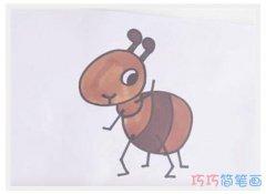 幼儿卡通棕色蚂蚁怎么画可爱_蚂蚁简笔画