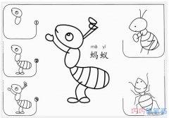 儿童卡通蚂蚁的画法带步骤_蚂蚁简笔画图片