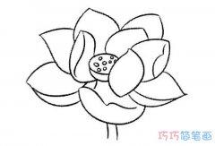 卡通简单又漂亮莲花怎么画好看_荷花简笔画图片