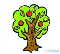 丰收的苹果树怎么画好看涂色_秋天的简笔画图片