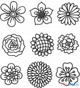 各种花朵怎么画好看简单_花朵简笔画图片