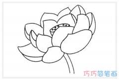 漂亮荷花的画法手绘步骤图_莲花简笔画图片