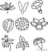18种花朵的画法简单又漂亮_各种花简笔画图片
