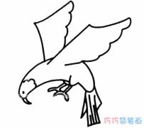 素描雄鹰展翅怎么画简单好看_老鹰的画法简笔画图片