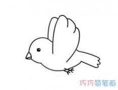 怎么画愤怒的小鸟简单好看 小鸟的画法步骤简笔画图片