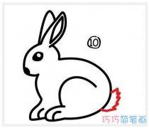 一步一步怎么画小兔子带步骤图 兔子的画法简笔画图片