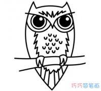 素描猫头鹰怎么画简单 猫头鹰的画法步骤简笔画图片