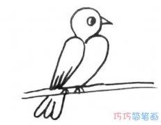 电线上的小鸟怎么画手绘可爱_小鸟的画法简笔画图片