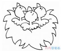 嗷嗷待哺小鸟怎么画简单可爱_鸟窝简笔画图片