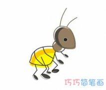 彩色蚂蚁的画法简单手绘_怎么画蚂蚁简笔画图片