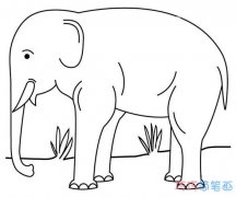 怎么画大象素描简单可爱 大象的画法简笔画图片