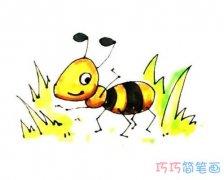 彩色蚂蚁怎么画简单好看_蚂蚁的画法简笔画图片