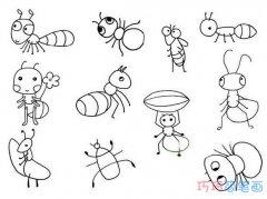 各种蚂蚁怎么画简单易学_带步骤图蚂蚁简笔画图片