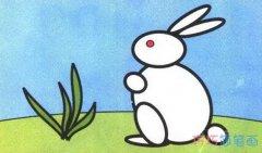 怎么画小白兔简笔画涂颜色_可爱兔子的画法步骤图