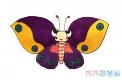 手绘蝴蝶的画法美丽多姿 彩色蝴蝶简笔画图片