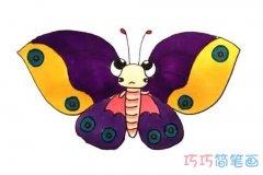 一步一步绘画彩色蝴蝶的画法带步骤图简笔画教程