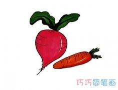 一步一步绘画萝卜的画法带步骤图涂色简笔画教程