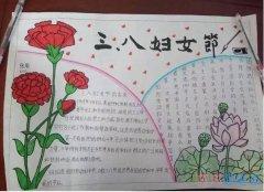 关于五年级三八妇女节康乃馨手抄报画法图片