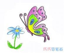 怎么画蝴蝶采花蜜简笔画步骤教程涂颜色