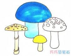 怎么画漂亮蘑菇涂颜色 卡通蘑菇的画法步骤教程