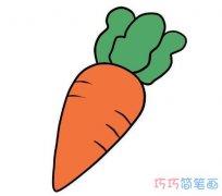 卡通胡萝卜画法步骤图彩色 胡萝卜简笔画图片