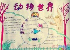 小学生关于动物世界 快乐数手抄报怎么画简单漂亮