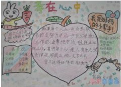 小学生关于孝在心中小白兔手抄报怎么画简单漂亮