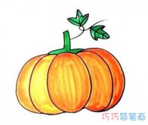 简单大南瓜的画法详细步骤图带颜色