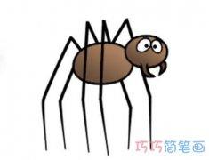 儿童画蜘蛛简笔画怎么画带步骤图彩色