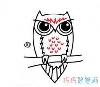 儿童猫头鹰简笔画画法教程一步一步绘画