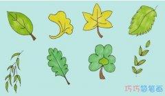 八种树叶的画法步骤简笔画教程简单漂亮涂色