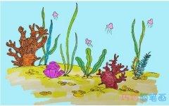 教你一步一步绘画珊瑚简笔画手绘简单漂亮