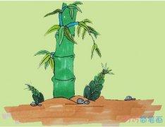 教你一步一步画彩色竹子简笔画手绘简单漂亮