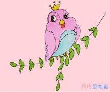 教你一步一步绘画小鸟简笔画涂色简单好看