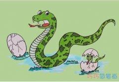 教你怎么画蛇简笔画步骤教程涂颜色