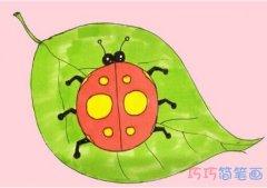 教你如何画七星瓢虫简笔画教程涂颜色